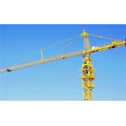 建筑工地塔吊型号-静海工地塔吊-河北塔吊租赁选捷维诺(查看)图片