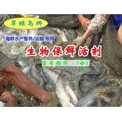翠绿岛生物(图)|贝类水产保鲜|广西水产保鲜图片