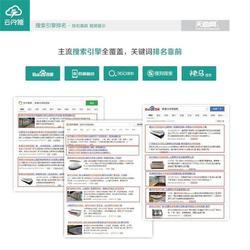 专业网站建设公司-长安网站建设公司-东莞天助图片