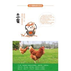 乡野邻家,新郑五谷鸡蛋,五谷鸡蛋图片