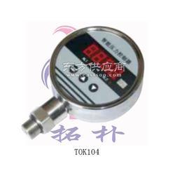 电池供电压力表特点图片