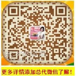 台湾贝尔挺图片