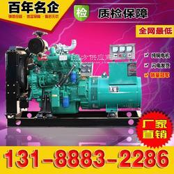 潍柴50kw千瓦柴油发电机组 有刷图片