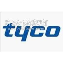 泰科探头CP200图片