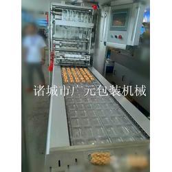 诸城广元机械(查看) 豆干拉伸膜全自动真空包装机图片