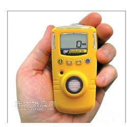 O2测氧仪加拿大BW原装现货GAXT-X便携式测氧仪图片