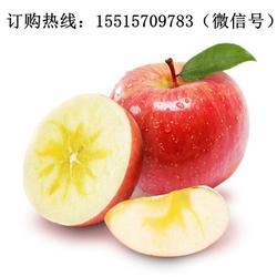 冰糖心苹果 正宗-河南团购总经销(在线咨询)冰糖心苹果图片