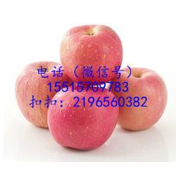 郑州总经销-有机苹果礼盒厂家直销处图片