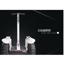 电动平衡车供应商、莱芜电动平衡车、鹘鹰智能(查看)图片