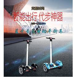 咸宁电动平衡车 @鹘鹰智能厂家直销 电动平衡车商图片