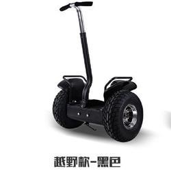 湖北电动平衡车|@鹘鹰智能质量可靠|电动平衡车厂商