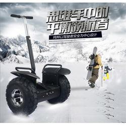 泰州电动平衡车、鹘鹰智能质量可靠、成人电动平衡车图片
