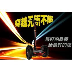 衢州电动平衡车|鹘鹰智能厂家直销|电动平衡车厂商图片