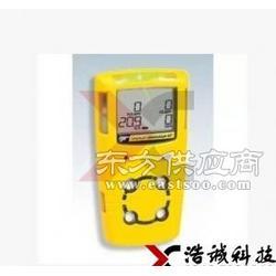 便携式复合气体检测仪 MC2-W可燃性气体检测仪温度图片
