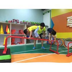 儿童蘑菇小山羊专业儿童体操运动器材篮鲸供应图片