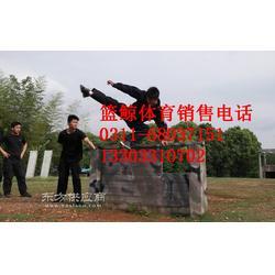 军区专用400米训练器材一副三人协作攀登墙多少钱图片
