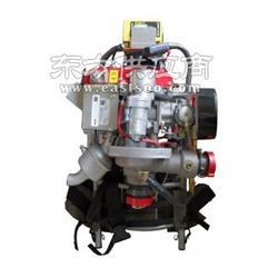 美国FYRPAK小型背负式森林消防泵图片