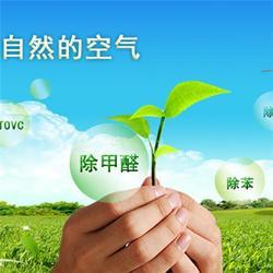 济南专业除甲醛|森郎环保(在线咨询)|专业除甲醛图片