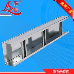 铜陵喷塑线槽-镀锌喷塑线槽-联标桥架图片