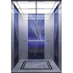 二層家用電梯,辛格林電梯(在線咨詢),家用電梯圖片