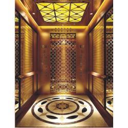 別墅電梯|辛格林電梯|別墅電梯參數圖片