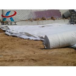 复合土工膜|防渗复合土工膜|儒风土工(多图)图片