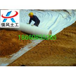 濮阳土工布|儒风土工(在线咨询)|土工布厂家图片