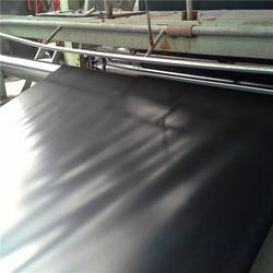 自贡土工膜、沼气池土工膜、儒风土工(优质商家)图片
