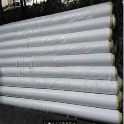 状元(图),海南ppr保温管,购买保温管图片