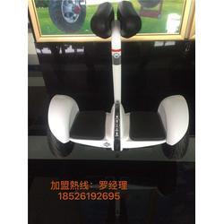 星逸电动车商家电话,武汉星逸电动车,欧亚高科图片
