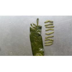 盐渍裙带菜-泰安市岱龙进出口(在线咨询)宝鸡裙带菜图片