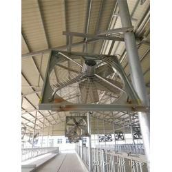 内蒙古牧场风机、牧场悬挂式风机、润江温控设备图片