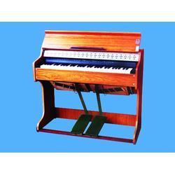 手风琴零售、九鼎体育装备(在线咨询)、河源手风琴图片