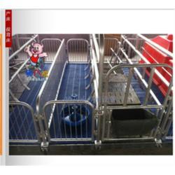 山东←猪八戒,母猪产ㄨ床料槽,三亚母猪产⊙床图片