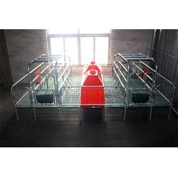 母猪产床多�缟偾�,甘肃■母猪产床,山东ㄨ猪八戒(查看)图片
