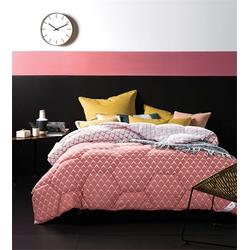 枕芯尺寸-东营枕芯-鸿巢梦床上用品图片