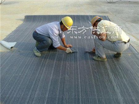 防水毯-大庚土工格栅-防水毯厂商图片