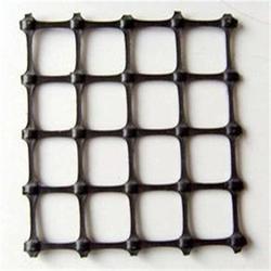 双向塑料土工格栅,大庚工贸(在线咨询),双向塑料土工格栅图片