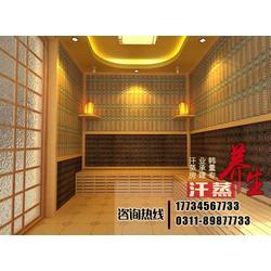 上海家用汗蒸房|韩量汗蒸房|家用多功能汗蒸房图片