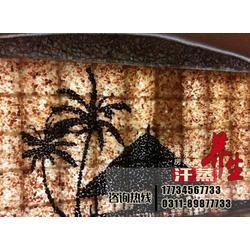 专业安装盐石细胞浴,云南盐石细胞浴,韩量汗蒸房(查看)图片