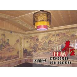 韩量汗蒸房|贵州家庭用汗蒸房|家庭用汗蒸房定做图片