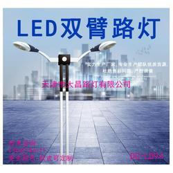 LED双臂户外防水路灯小区工程照明一体化图片
