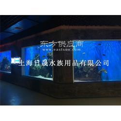 大型水族工程 大型水族商业体 海洋馆规划设计施工图片