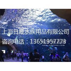 给海洋馆设计广告语/中小型海洋馆图片