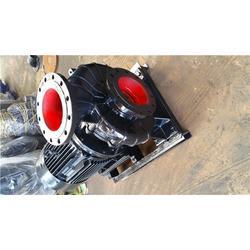立式管道泵快速-程跃泵业管道泵图片