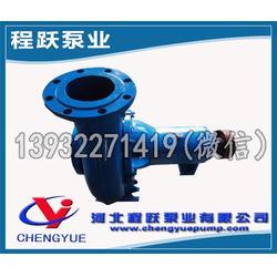节能纸浆泵,高效防堵塞,ZS125-350B节能纸浆泵图片