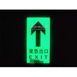 自发光地埋灯 疏散指示灯 地面钢化玻璃疏散指示标志,消防应急照明灯 优质消防地埋灯图片