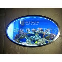 太和县淡水鱼缸图片