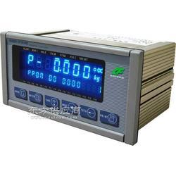 称重显示控制器XK3201T1图片