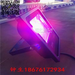 鸿悦牌LED植物生长灯100w150w节能植物补光灯图片